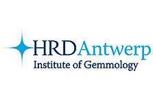 HRD-Experts-experts diplomés-experts qualifiés-experts professionnels-haut conseil du diamant anvers belgique