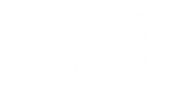 логотип ПУЛЬС cо словами белый2020.png
