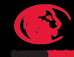 Gauteng Touch