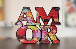 AMOR-modelo-4