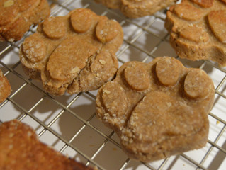 Making Dog Treats is Easy -- Learn How