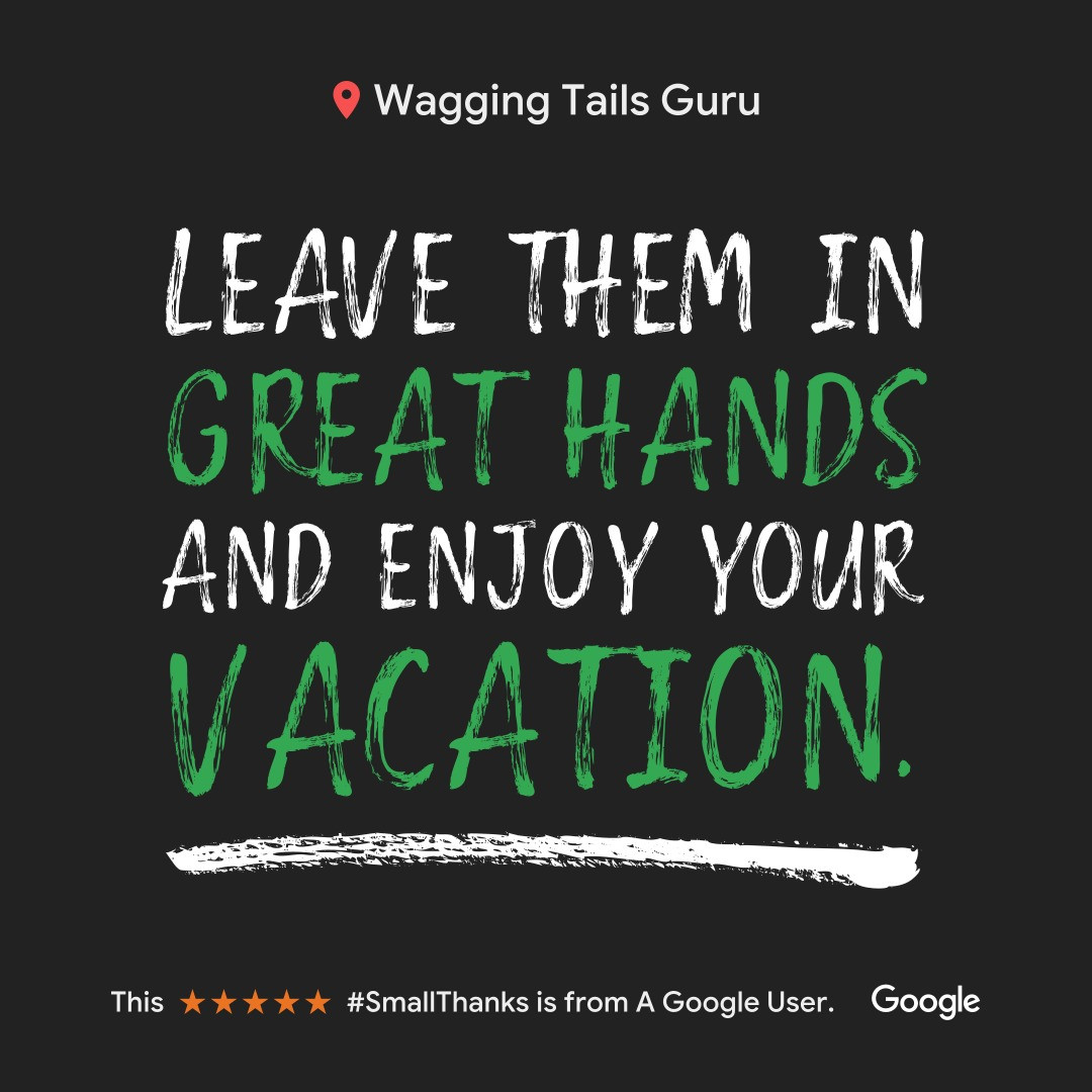 Wagging Tails Guru Client Review