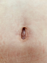 belly5-225x300.png