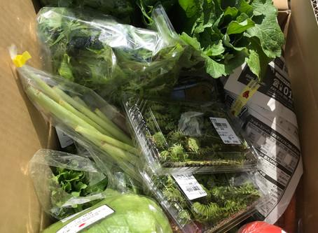高原野菜とビーフ