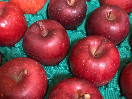 りんごの会