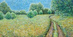 Meadow Series 1
