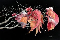 October Dogwood 1
