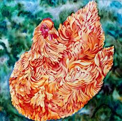 Mrs. Chicken