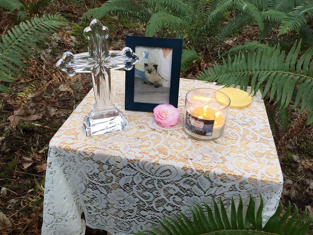 The Remembrance table for Arwen / Memorial Service for a Beloved Cat / www.HoneycombOasis.com