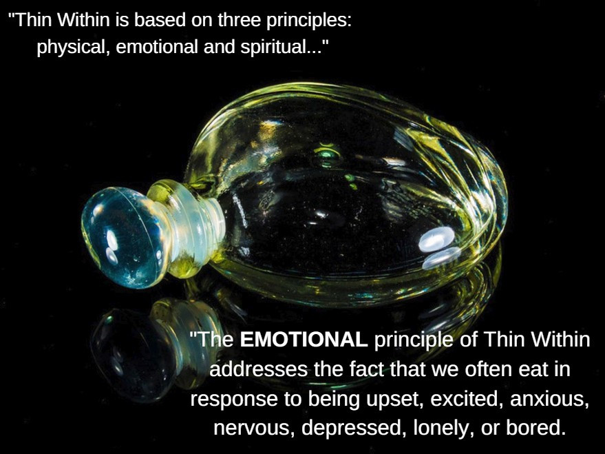 Thin Within Emotional Principle / The P.E.R.F.U.M.E. Zone (in Weight Loss Land) / www.HoneycombOasis.com