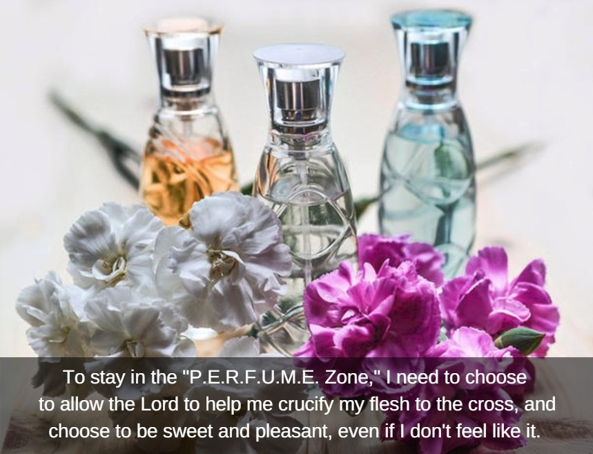 """To stay in the PERFUME Zone, I need to..."" / The P.E.R.F.U.M.E. Zone (in Weight Loss Land) / www.HoneycombOasis.com"