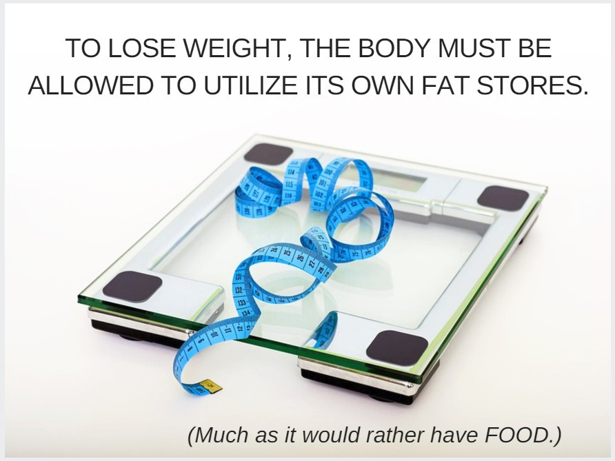 Clear scale with blue tape measure / The P.E.R.F.U.M.E. Zone (in Weight Loss Land) / www.HoneycombOasis.com