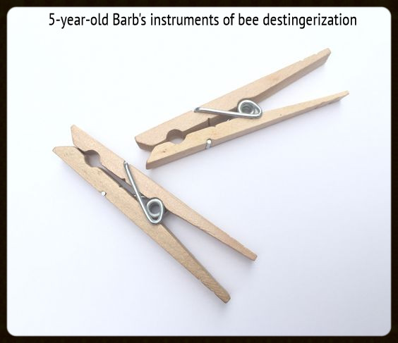 "2 clothespins ~ from ""Handling the Stingers of Life"" by Barb Shelton / HoneycombOasis.com"