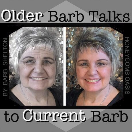 "Hexa-pic of ""Older Barb"" Talks to ""Current Barb"" / www.HoneycombOasis.com"