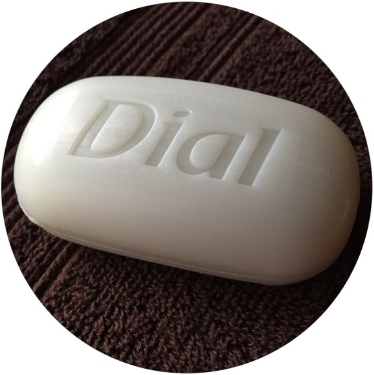 Dial soap new - 20 Sweet 'n' Simple Pleasures - www.HoneycombOasis.com