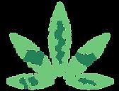 Asociación Peruana de Medicina Cannabinoide