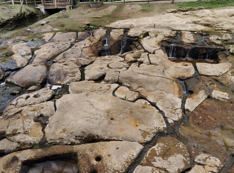 Visita Arqueológica  al Parque.jpg