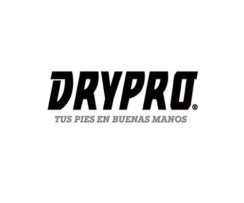 4 DYPRO IPF.jpg