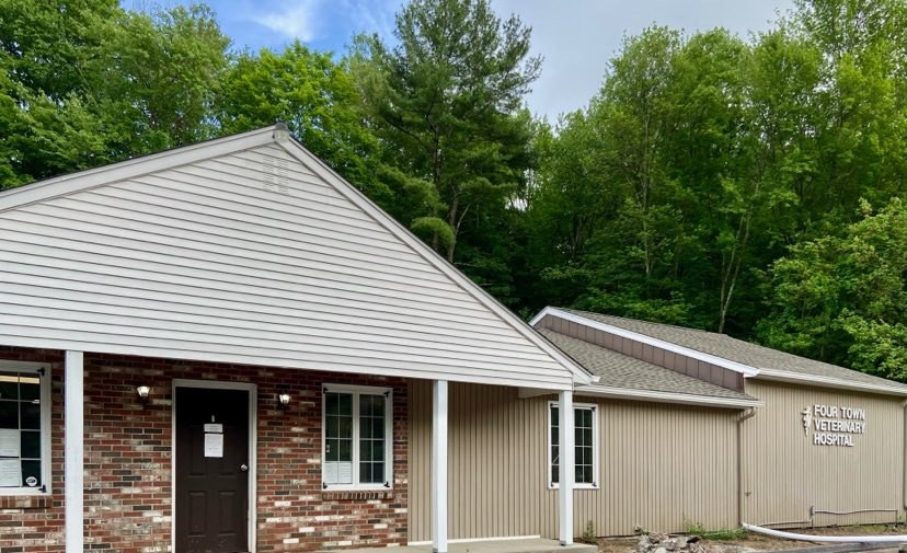 four town veterinary somers ct.jpg