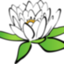 lotus-150693_960_720.png