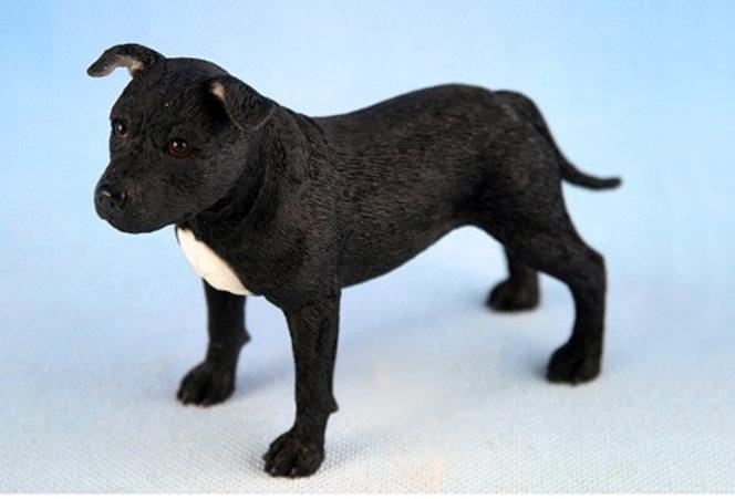 Staffordshire Bull Terrier Black and White by Leonardo