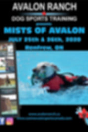 Mists of Avalon 2020 Poster (1).jpg