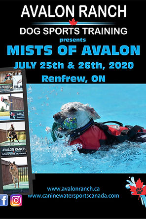 Mists of Avalon 2020 Poster (1).jpg