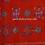 Pakko Hand Embroidery Shawls