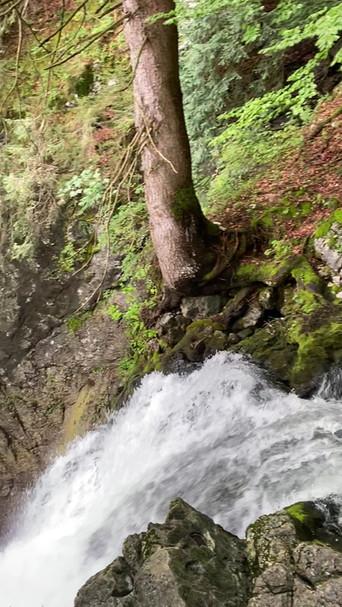 Die Quelle des Gollinger Wasserfalls