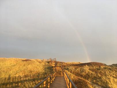 Regenbogen über dem Holzweg durch die Dünen