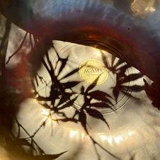 Klangschale mit Schatten von Ahorn Blättern als Cover für Sound Healing Gewitter, Regen & Vogelgesang