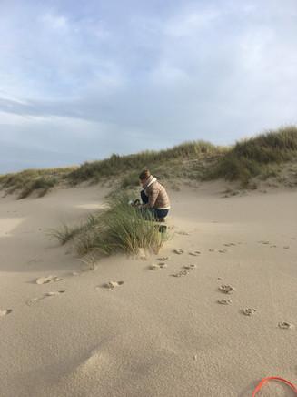 Aufnahme des Meeres windgeschützt hinter Strandgras