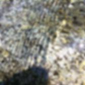 Wellen auf dem Wasser über einem Stein