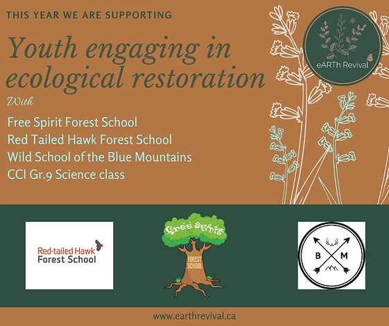 Youth engaging in ecological restoration