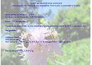 Gite abeille Saint Michel, Marthod, tarif des prestations annexes