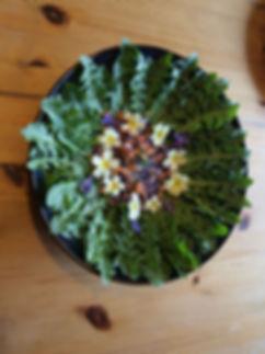 Chambre d'hôtes l'Abeille Saint-Michel à Albertville : salade de pissenlits et de primevères