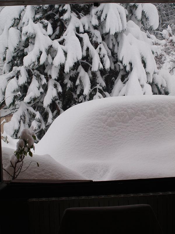 Chambre d'hôte l'Abeille Saint-Michel à Albertville (Marthod), en Savoie : le jardin sous la neige.