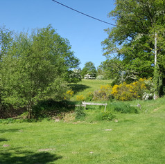 The meadow next to Bouleau.