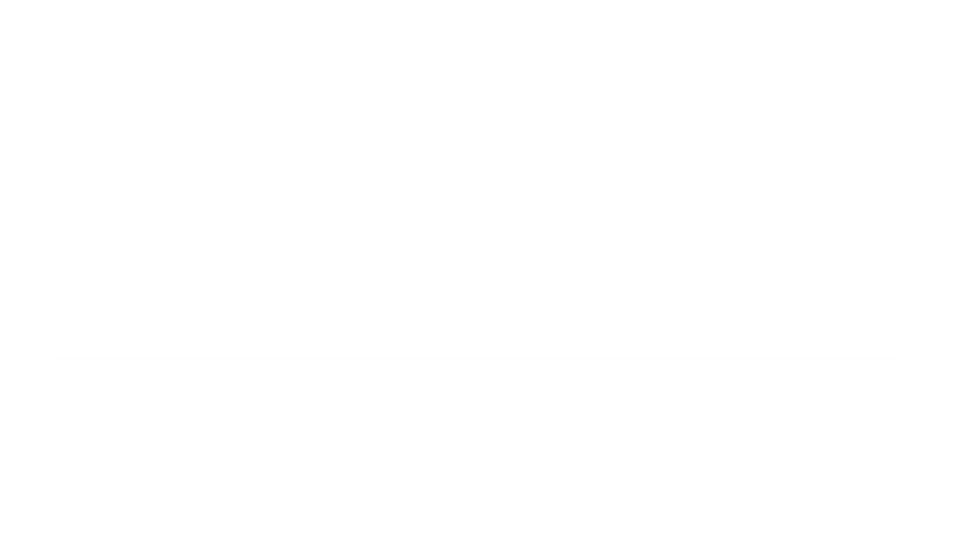 Outdoor Living At Its Finest by Red Valley Landscape & Construction