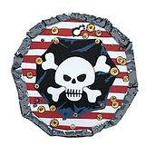 visiodan piratenschild.jpg