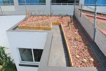 imperllanta techo xerofitas7.jpg