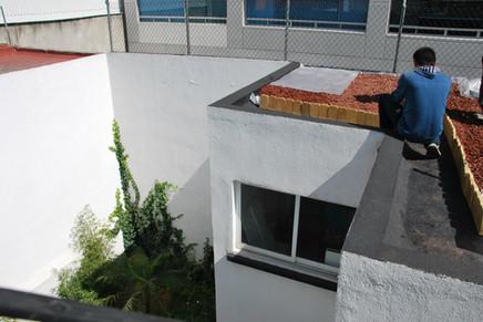 a3p techo xerofitas2.jpg