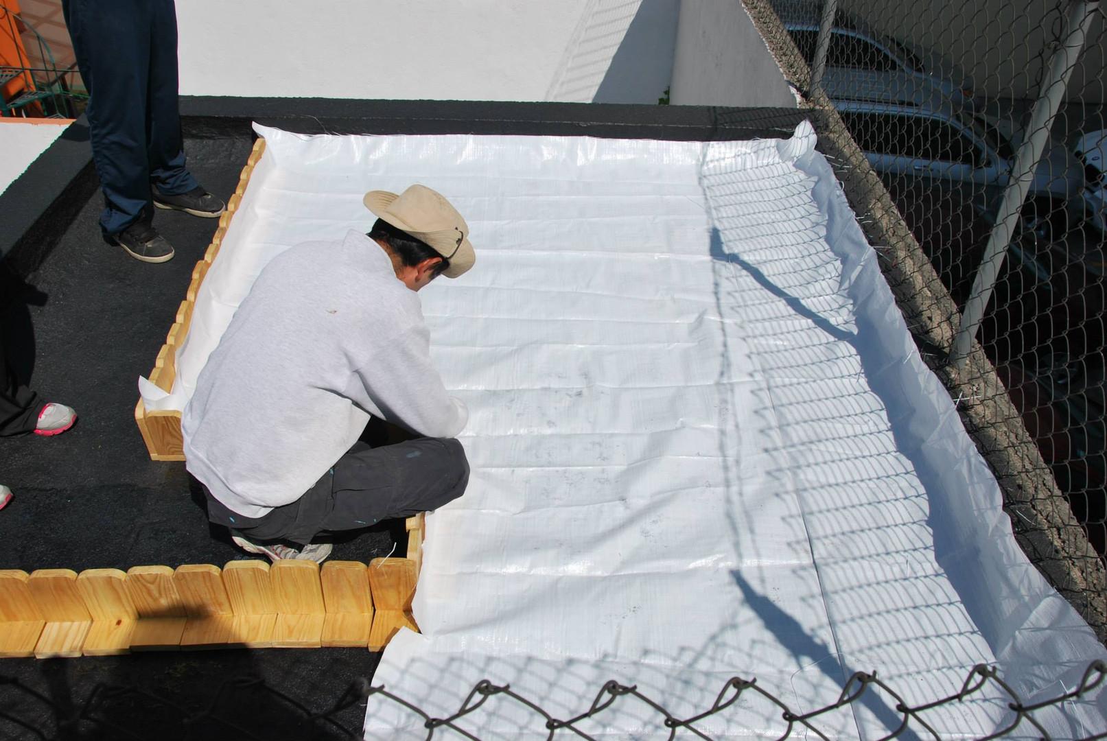 imperllanta techo xerofitas6.jpg