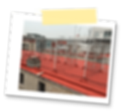inicio_proyecto_polaroid5.png