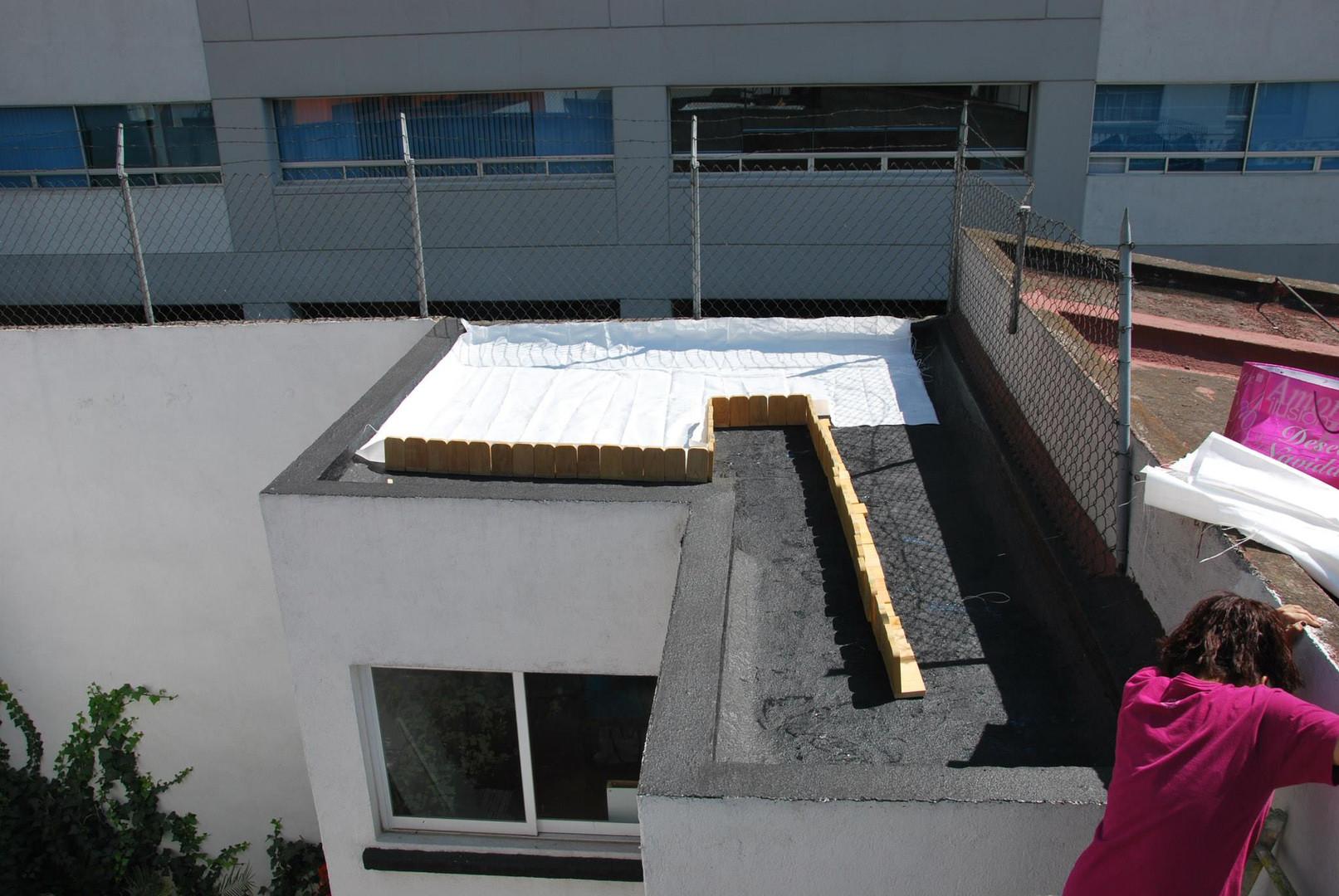 imperllanta techo xerofitas5.jpg