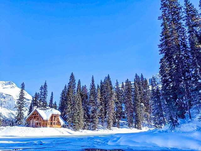 Beautiful photograph of quiet and peaceful rocky mountains in the winter time. Douglas fir trees and frozen lake with a wooden cabin at Emerald Lake, Lake Louise Yoho National Park in Banff Canada.