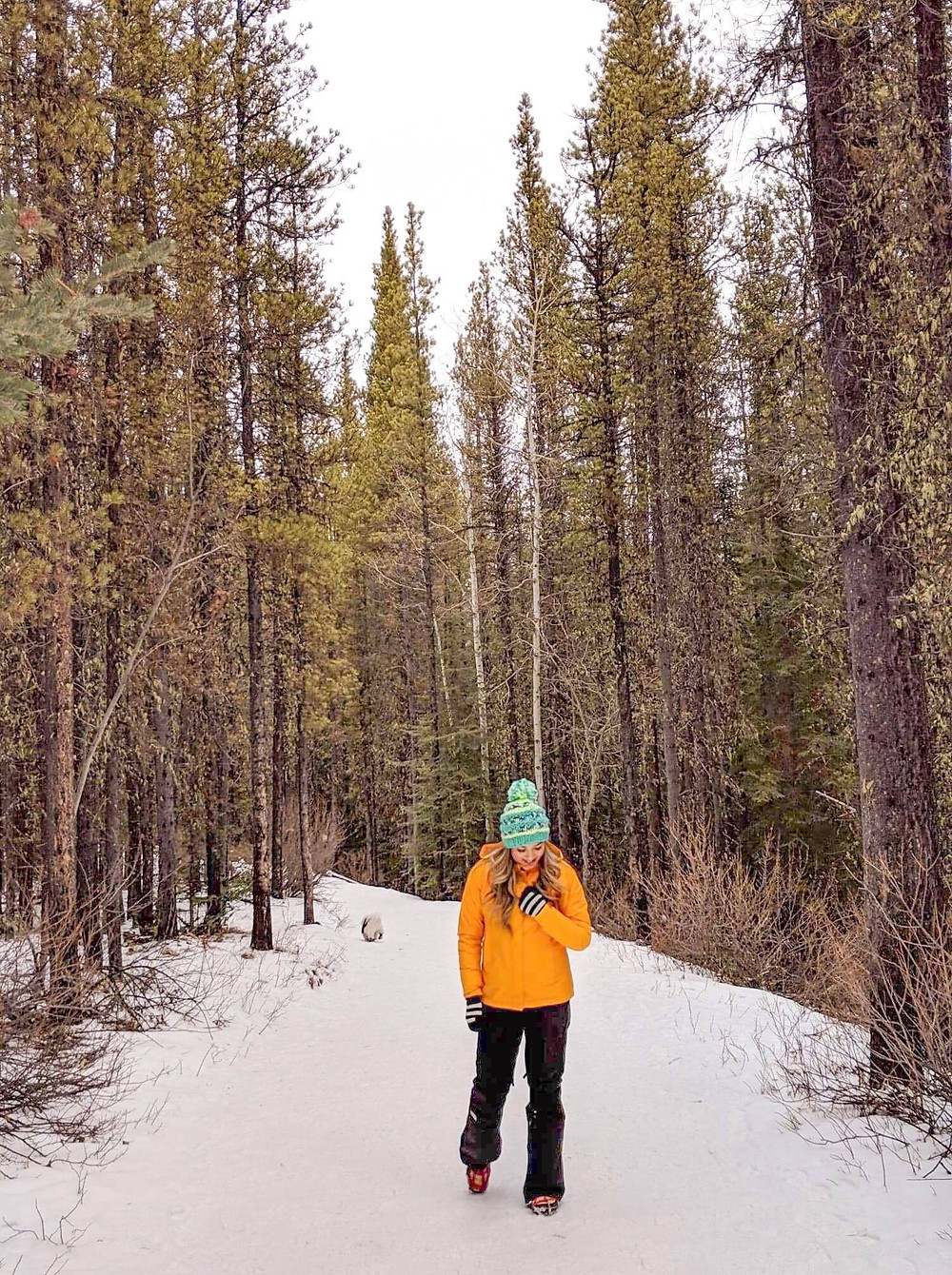 Girl travel blogger hiking in Canadian rocky mountains in the forest during winter time with fluffy white dog in the background. The North Face hiking gear.