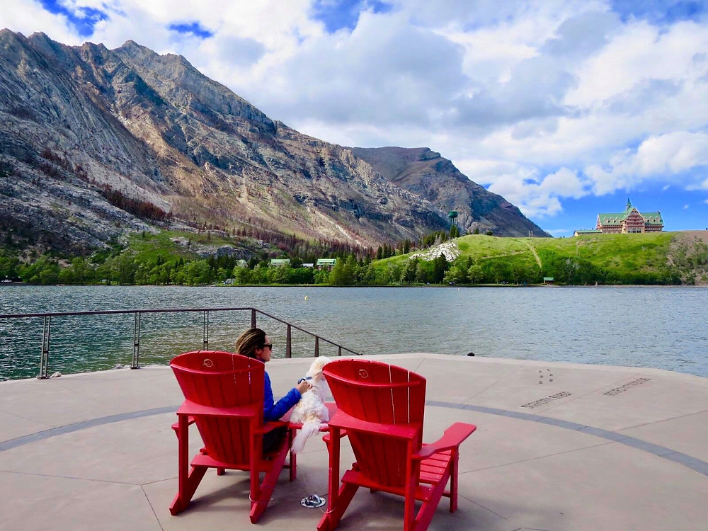 Girl travel blogger and her cute shihtzu pomeranian enjoys the gorgeous views of Waterton Lakes in Canada's Rocky Mountains.