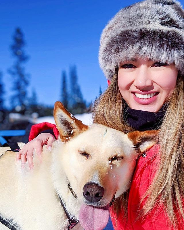 Photograph of Husky dog sledding in rocky mountains in the winter time. Peaceful quiet happiness like travel through magical narnia. Girl travel fashion blogger with alaskan husky dog in canadian winter rocky mountains.