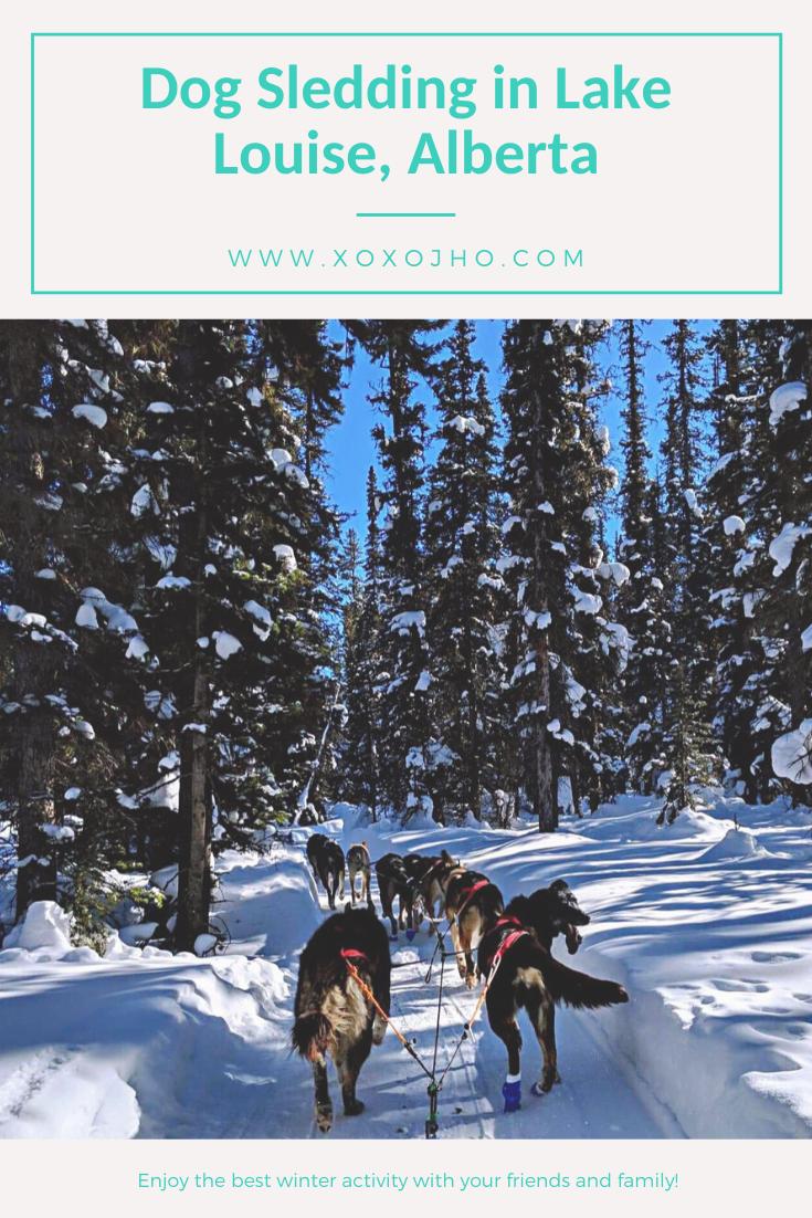blog cover for xoxojho travel blog. dog sledding through mountains winter time. Girl travel blogger.